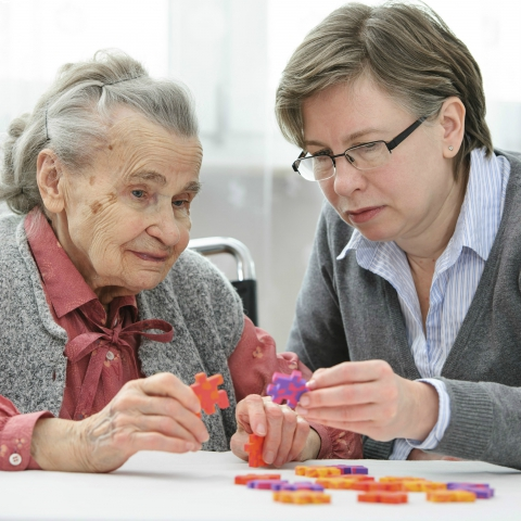 Care Home Support